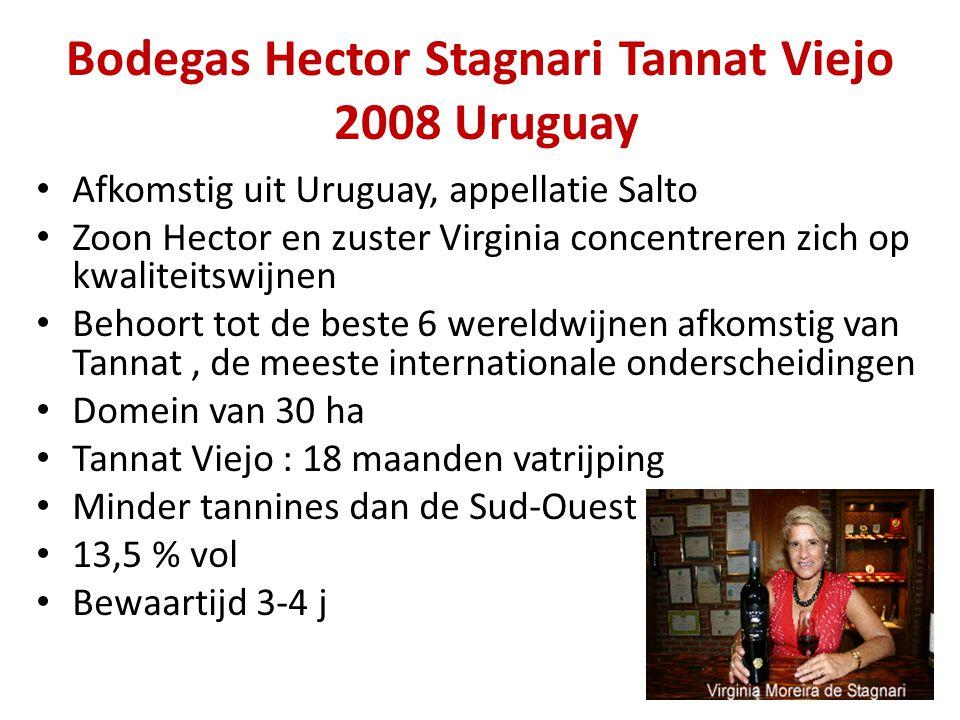 Bodegas Hector Stagnari Tannat Viejo 2008 Uruguay