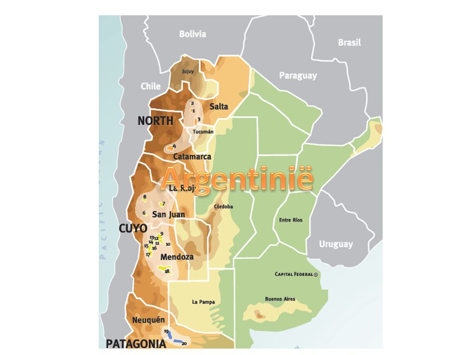 Argentinië Oudste wijnregio van Argentinië 5e grootste wijnproducent