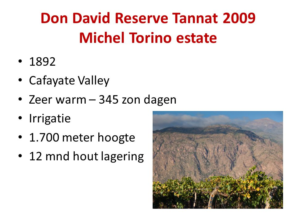 Don David Reserve Tannat 2009 Michel Torino estate