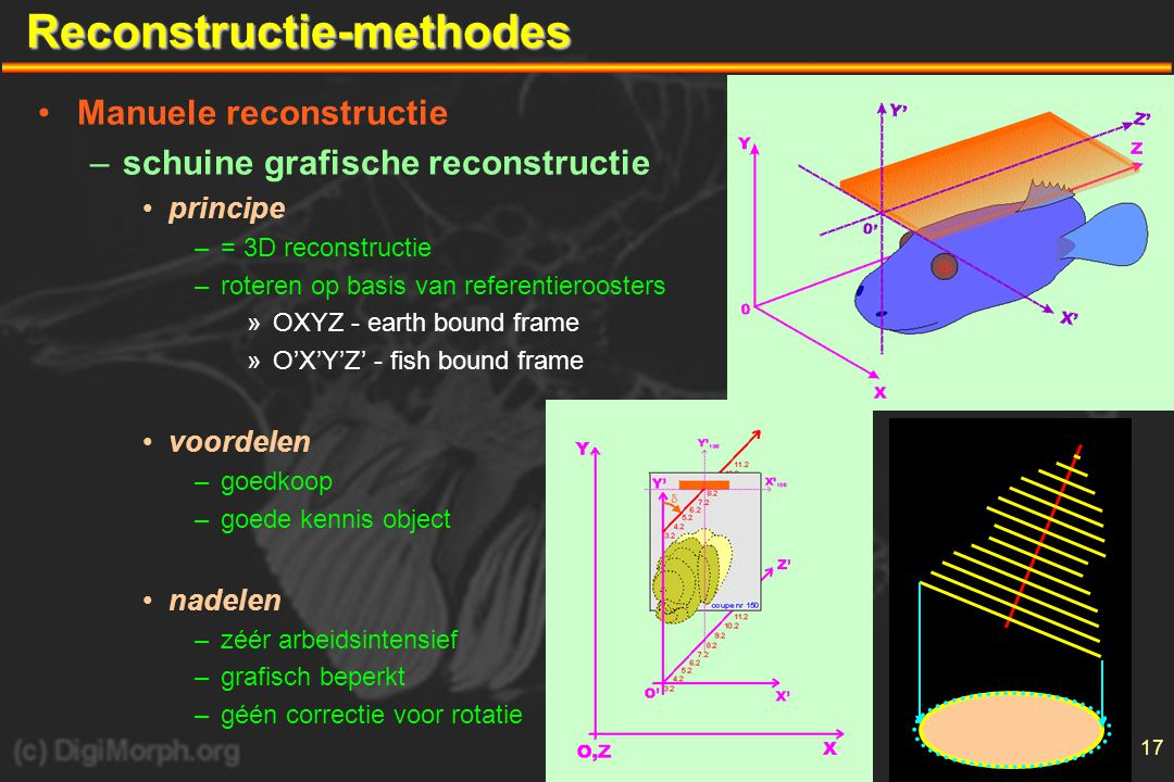 Reconstructie-methodes