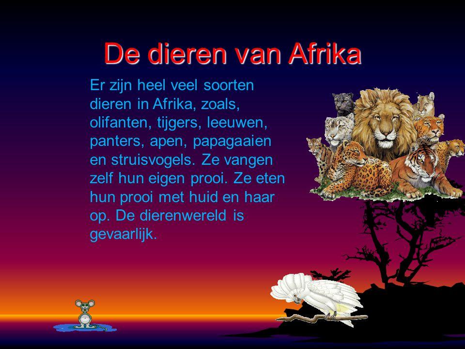 De dieren van Afrika