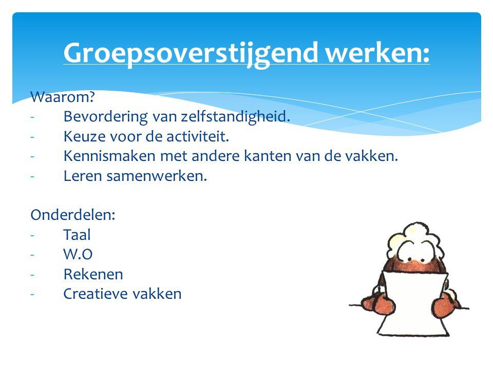 Groepsoverstijgend werken: