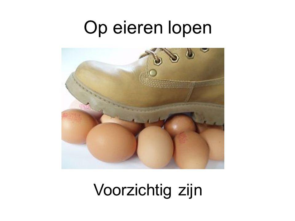 Op eieren lopen Voorzichtig zijn