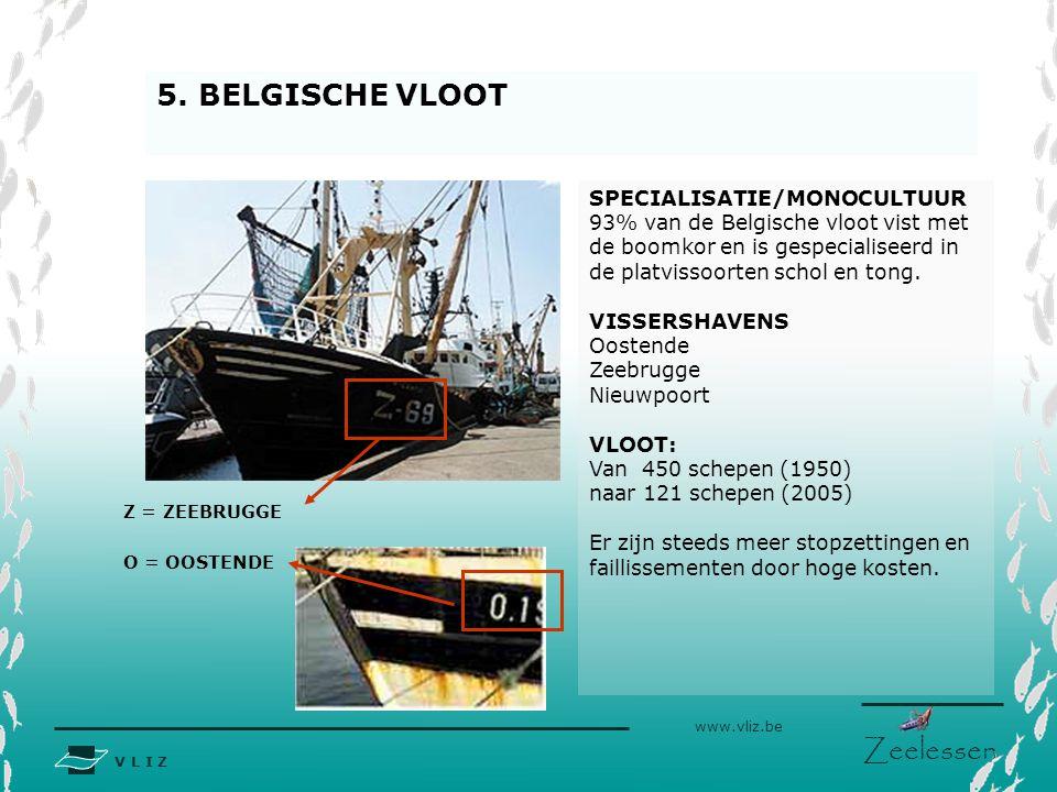 5. BELGISCHE VLOOT SPECIALISATIE/MONOCULTUUR