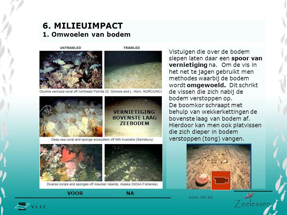 6. MILIEUIMPACT 1. Omwoelen van bodem