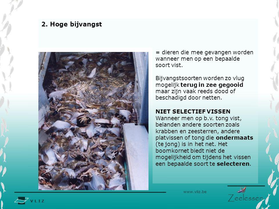 2. Hoge bijvangst = dieren die mee gevangen worden wanneer men op een bepaalde soort vist.