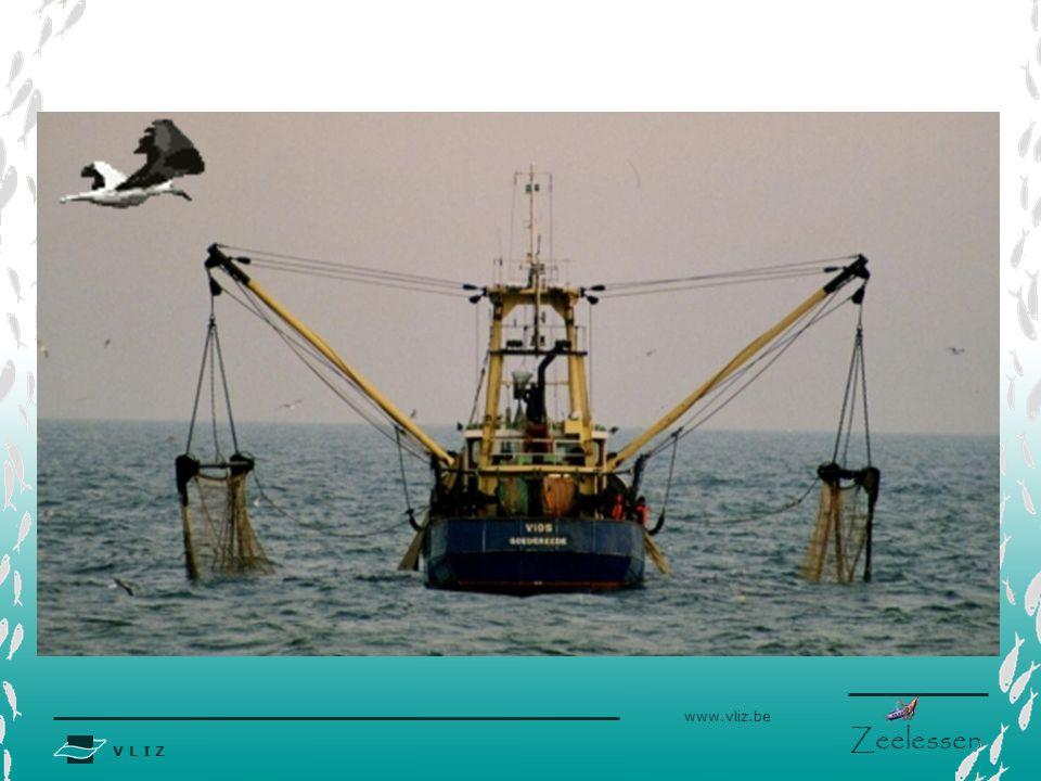 Bron foto: http://www.visserijnieuws.nl