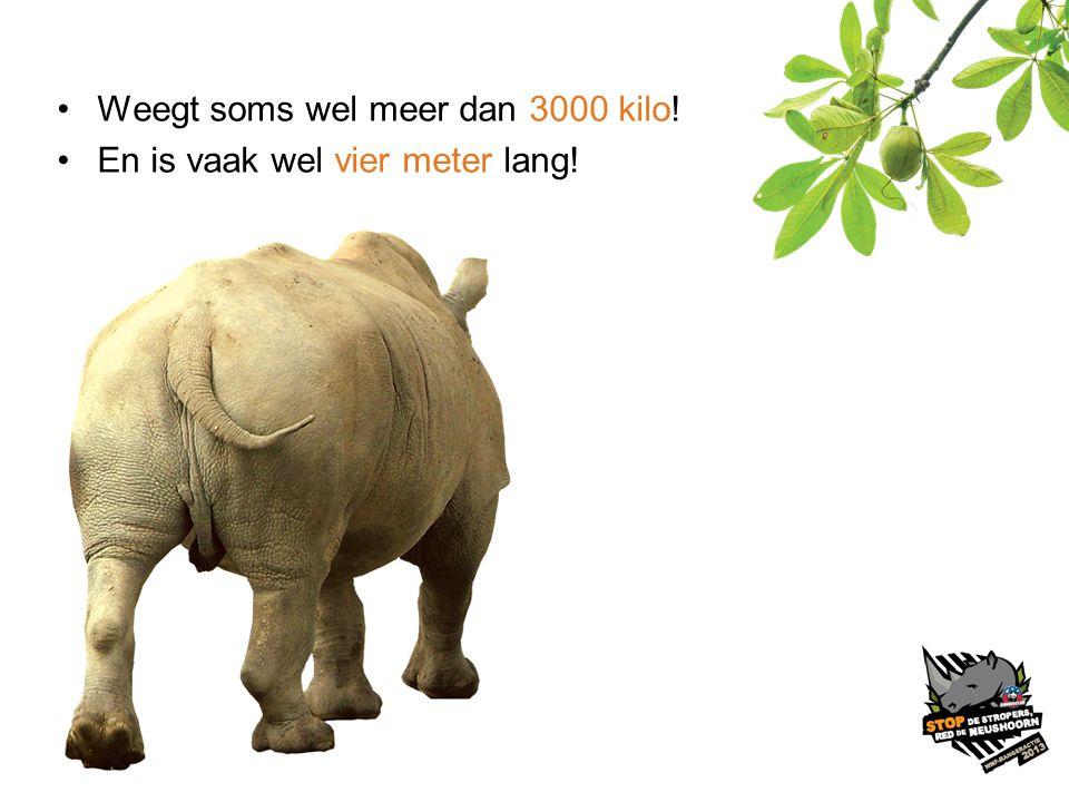 Weegt soms wel meer dan 3000 kilo!
