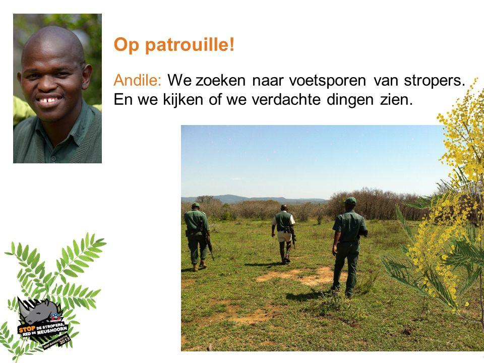 Op patrouille! Andile: We zoeken naar voetsporen van stropers.
