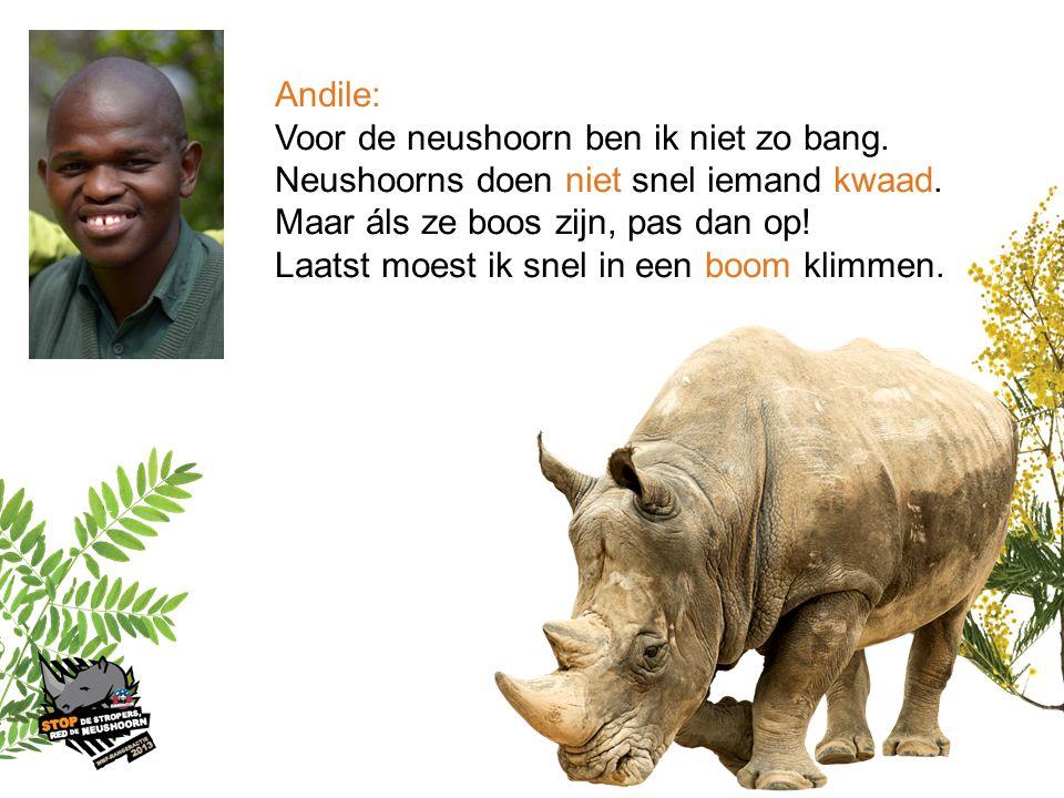 Andile: Voor de neushoorn ben ik niet zo bang. Neushoorns doen niet snel iemand kwaad. Maar áls ze boos zijn, pas dan op!