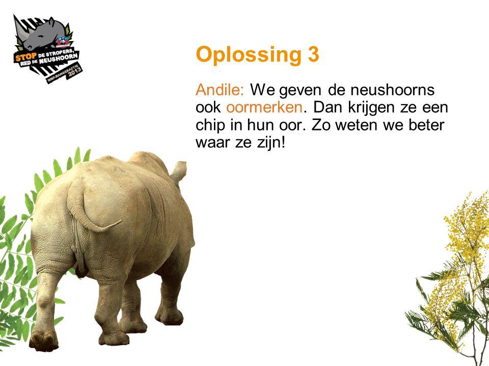 Oplossing 3 Andile: We geven de neushoorns ook oormerken.