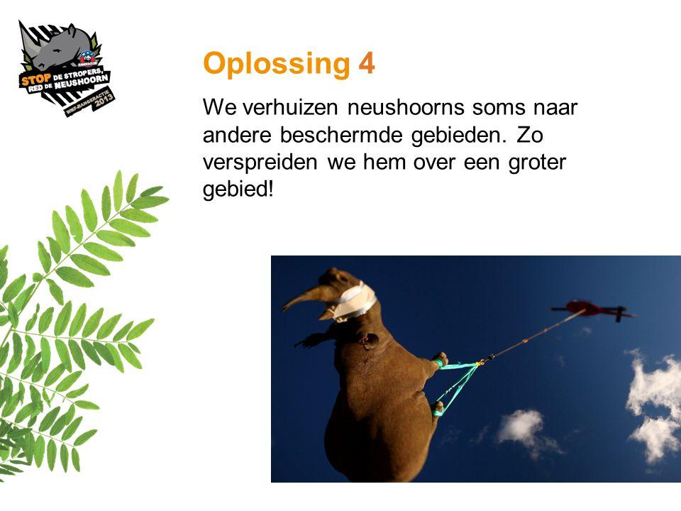 Oplossing 4 We verhuizen neushoorns soms naar andere beschermde gebieden.