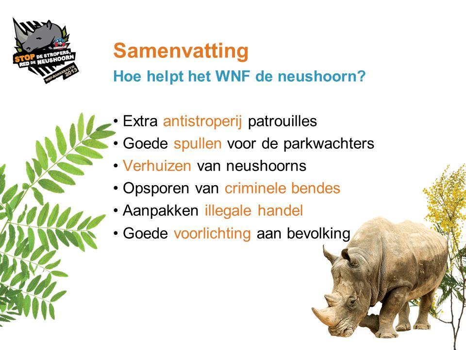 Samenvatting Hoe helpt het WNF de neushoorn