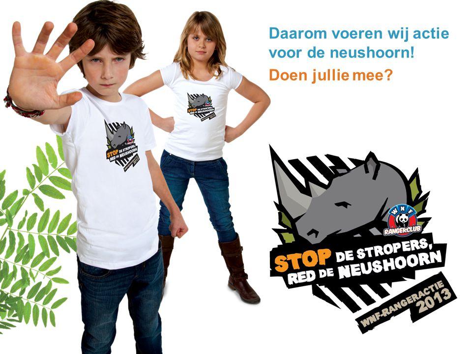 Daarom voeren wij actie voor de neushoorn!