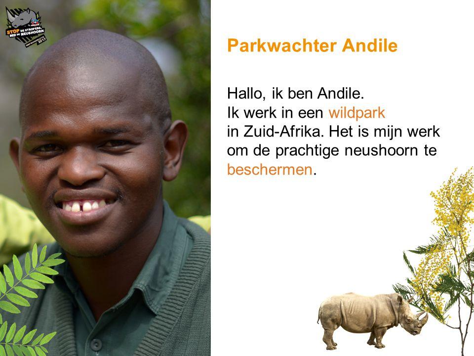 Parkwachter Andile Hallo, ik ben Andile. Ik werk in een wildpark