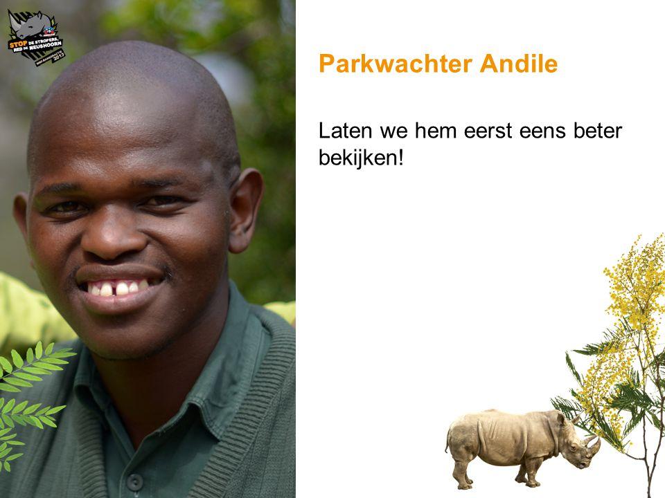 Parkwachter Andile Laten we hem eerst eens beter bekijken!