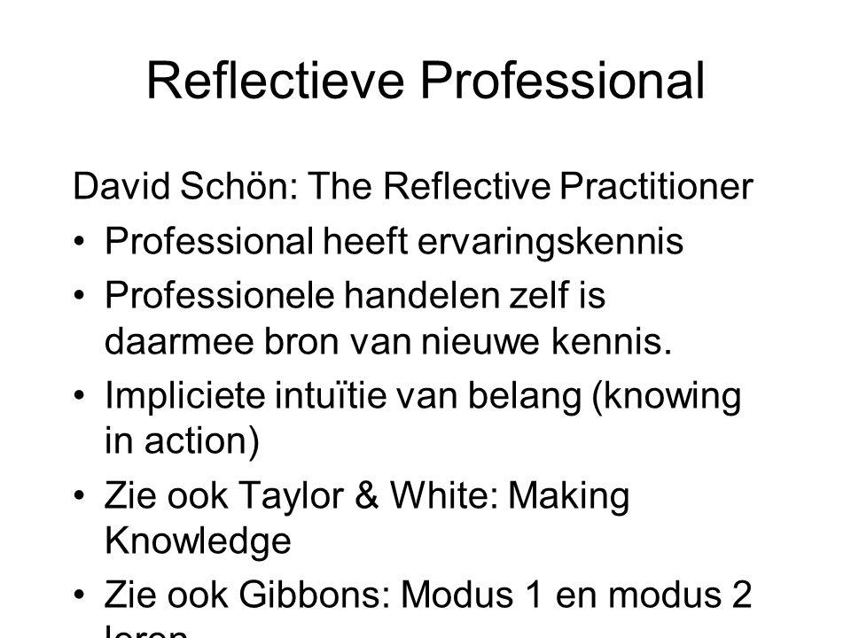 Reflectieve Professional