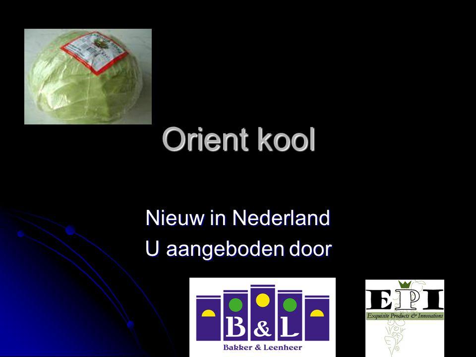Nieuw in Nederland U aangeboden door