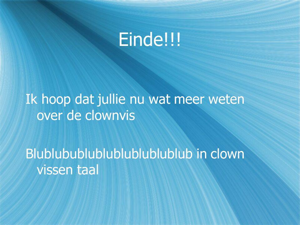 Einde!!! Ik hoop dat jullie nu wat meer weten over de clownvis