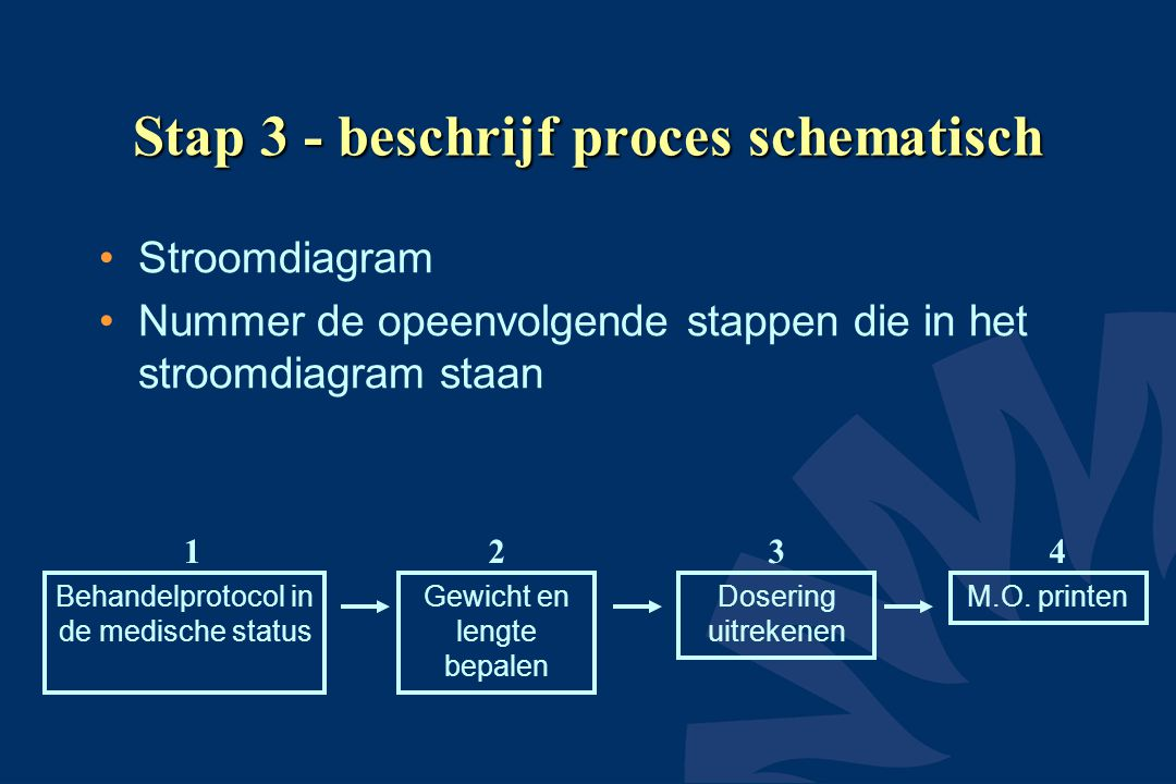 Stap 3 - beschrijf proces schematisch