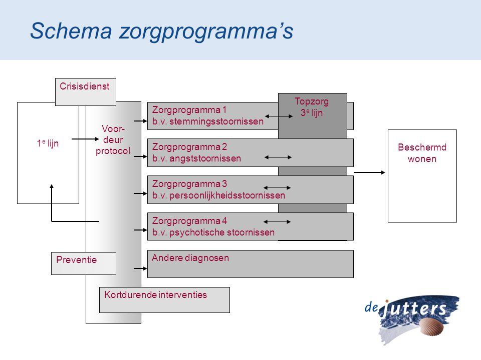 Schema zorgprogramma's