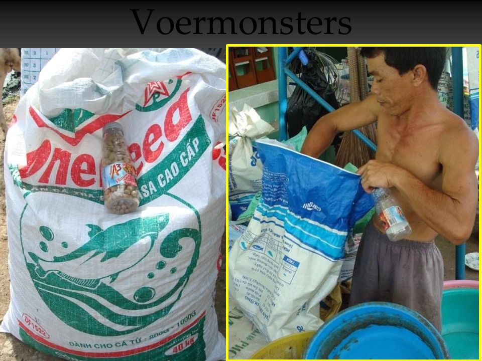Voermonsters