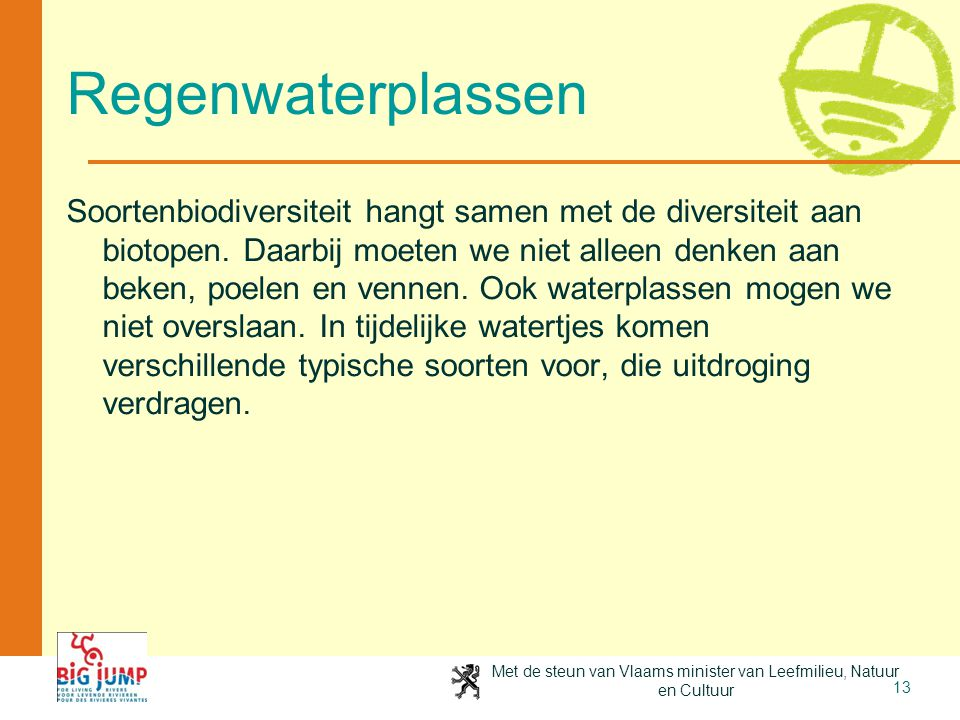 Regenwaterplassen.