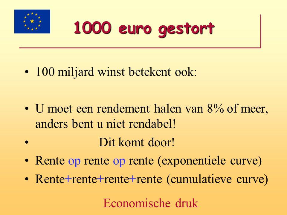1000 euro gestort 100 miljard winst betekent ook: