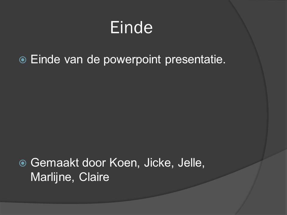 Einde Einde van de powerpoint presentatie.
