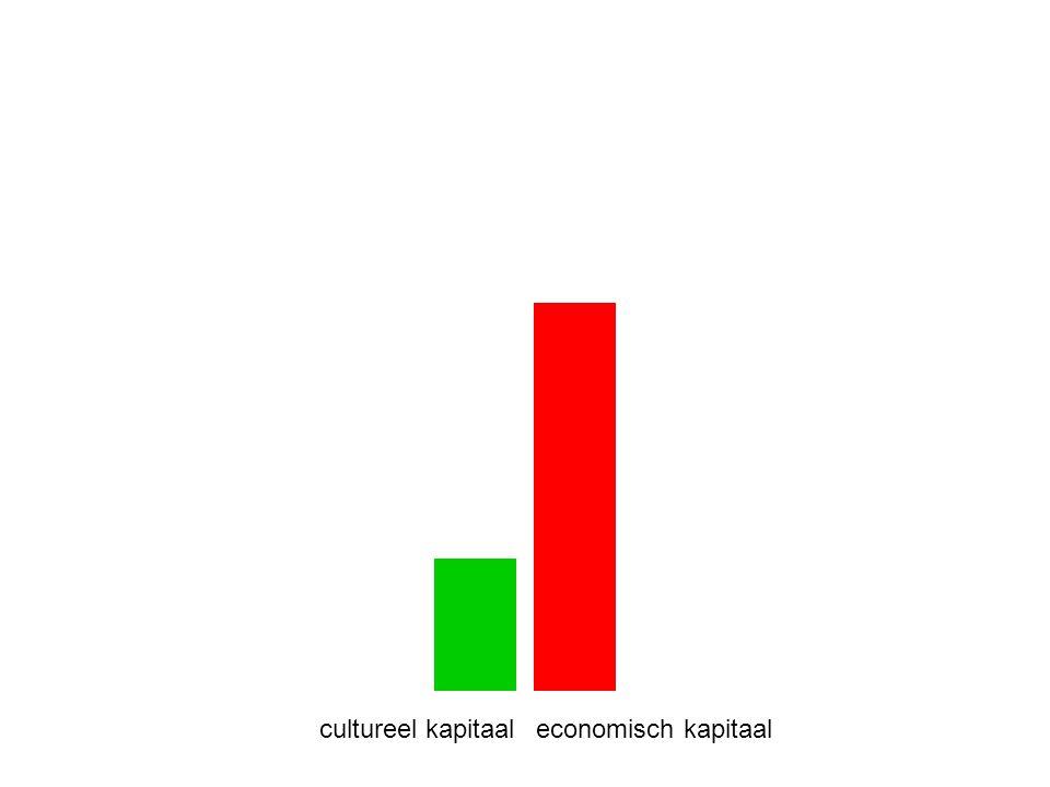 cultureel kapitaal economisch kapitaal