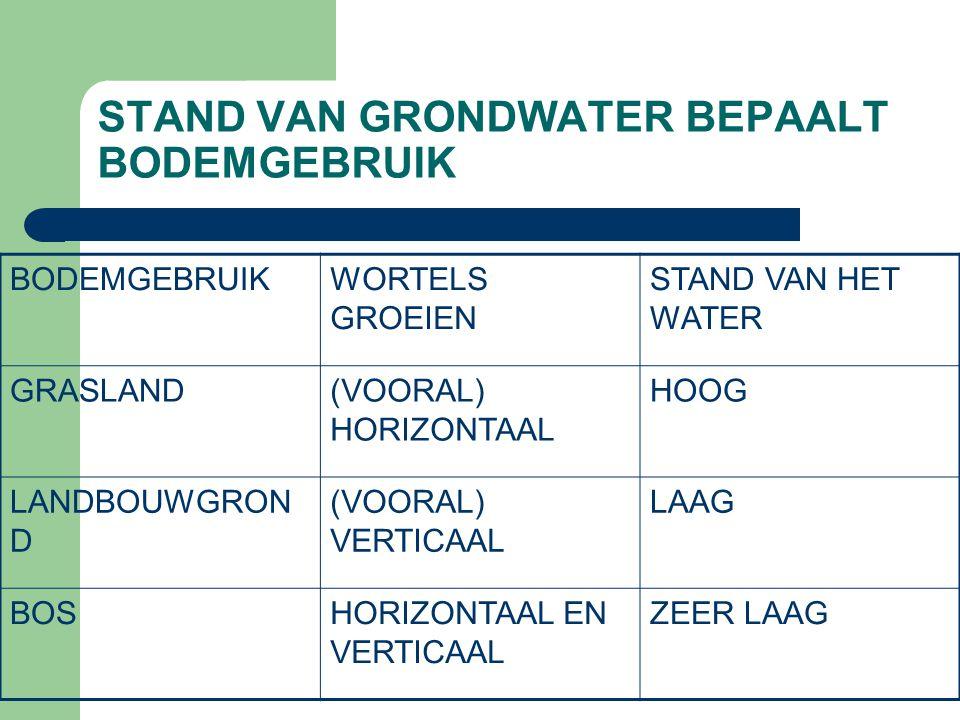 STAND VAN GRONDWATER BEPAALT BODEMGEBRUIK