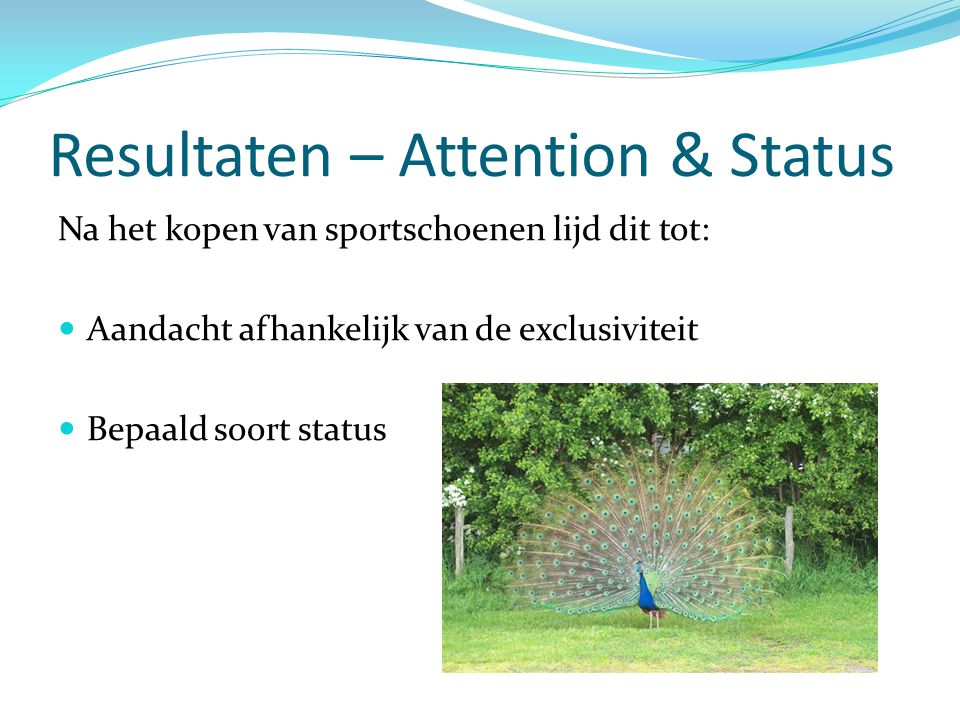 Resultaten – Attention & Status