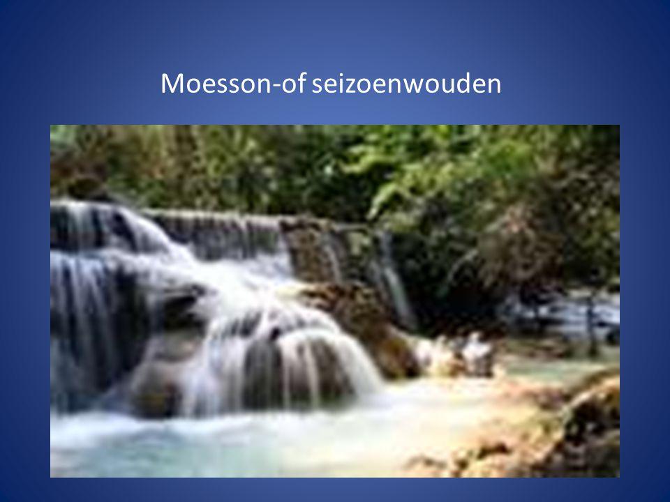 Moesson-of seizoenwouden
