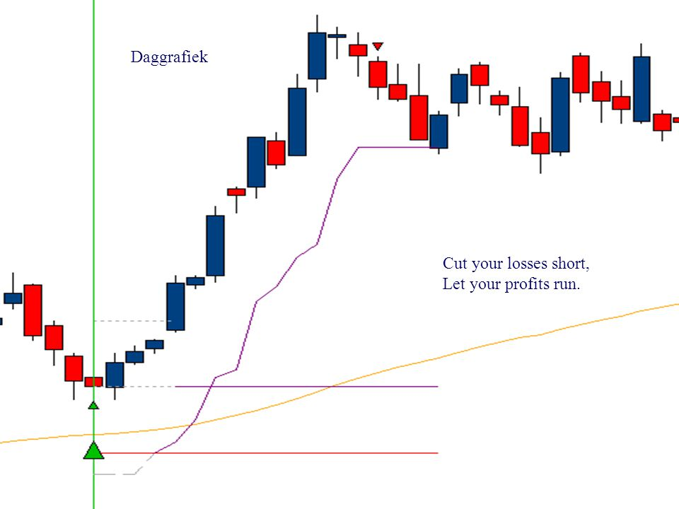 Daggrafiek Cut your losses short, Let your profits run.