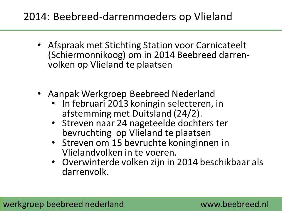 2014: Beebreed-darrenmoeders op Vlieland