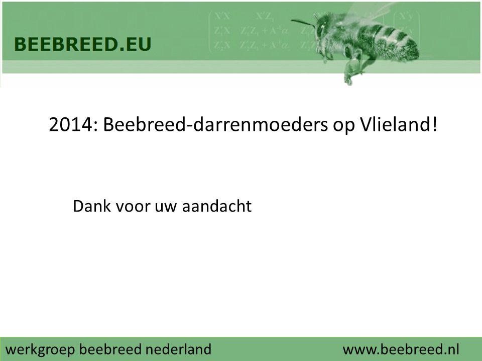 2014: Beebreed-darrenmoeders op Vlieland!