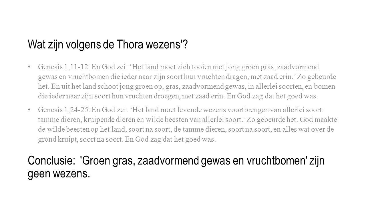 Wat zijn volgens de Thora wezens