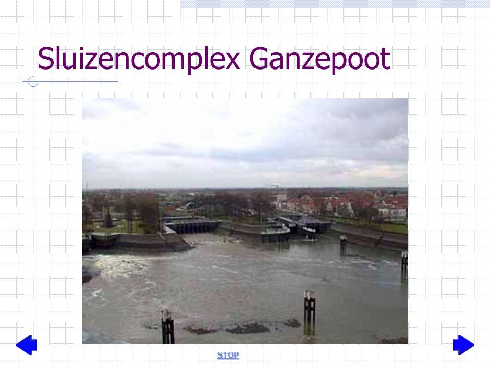 Sluizencomplex Ganzepoot