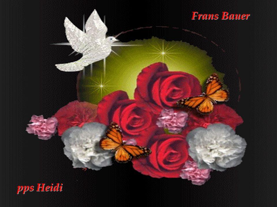 Frans Bauer pps Heidi