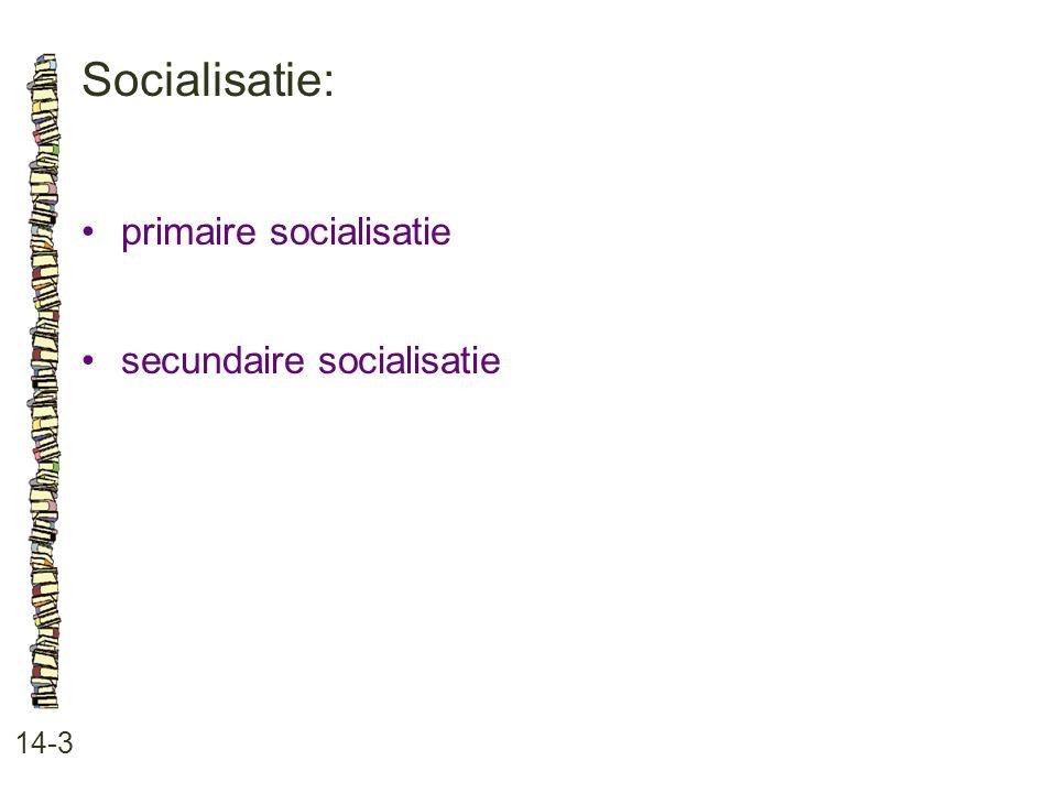 Socialisatie: • primaire socialisatie • secundaire socialisatie 14-3
