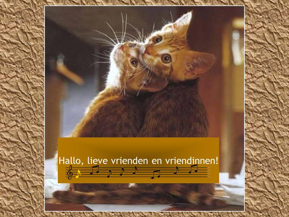 Hallo, lieve vrienden en vriendinnen!