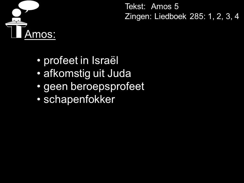 Amos: profeet in Israël afkomstig uit Juda geen beroepsprofeet
