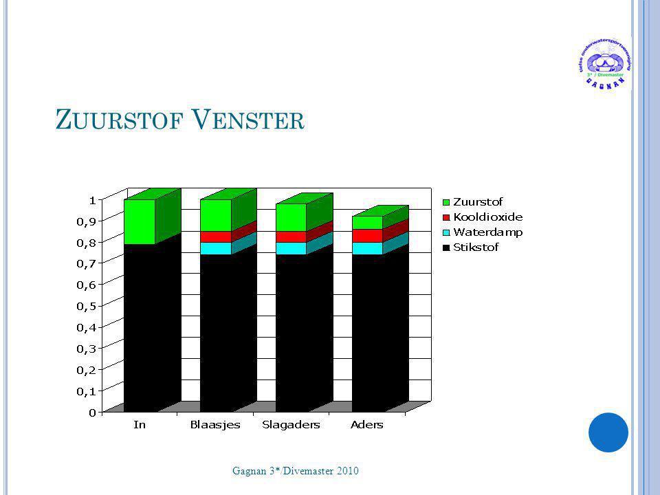 Zuurstof Venster Gagnan 3*/Divemaster 2010