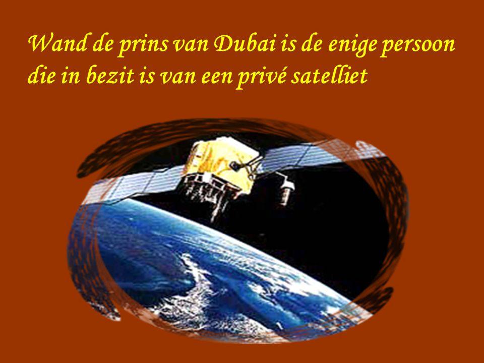 Wand de prins van Dubai is de enige persoon die in bezit is van een privé satelliet