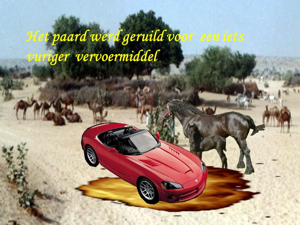 Het paard werd geruild voor een iets vuriger vervoermiddel