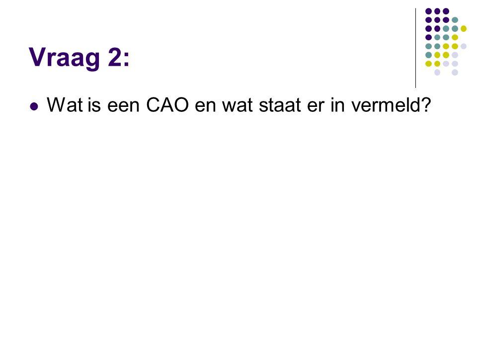 Vraag 2: Wat is een CAO en wat staat er in vermeld