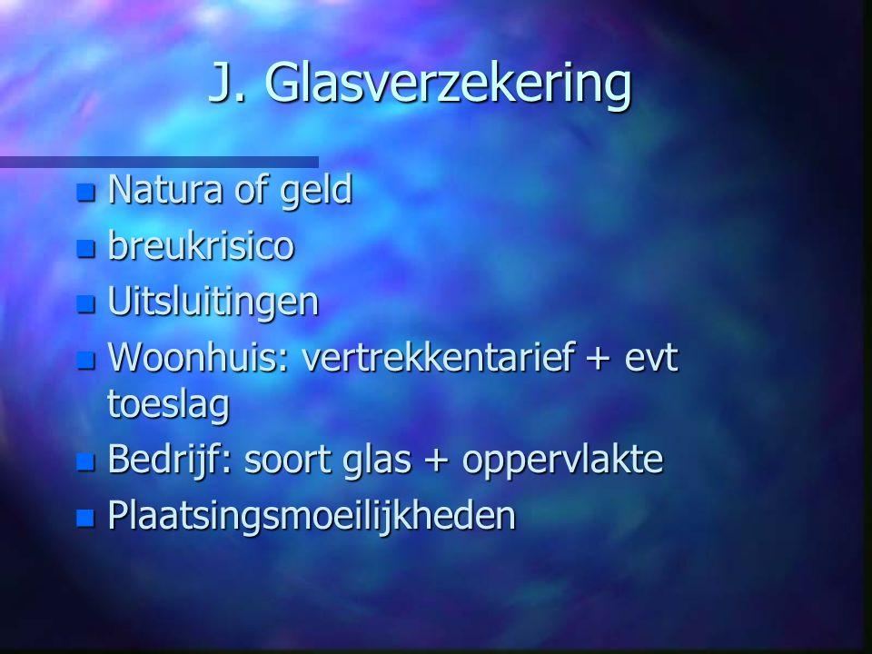 J. Glasverzekering Natura of geld breukrisico Uitsluitingen