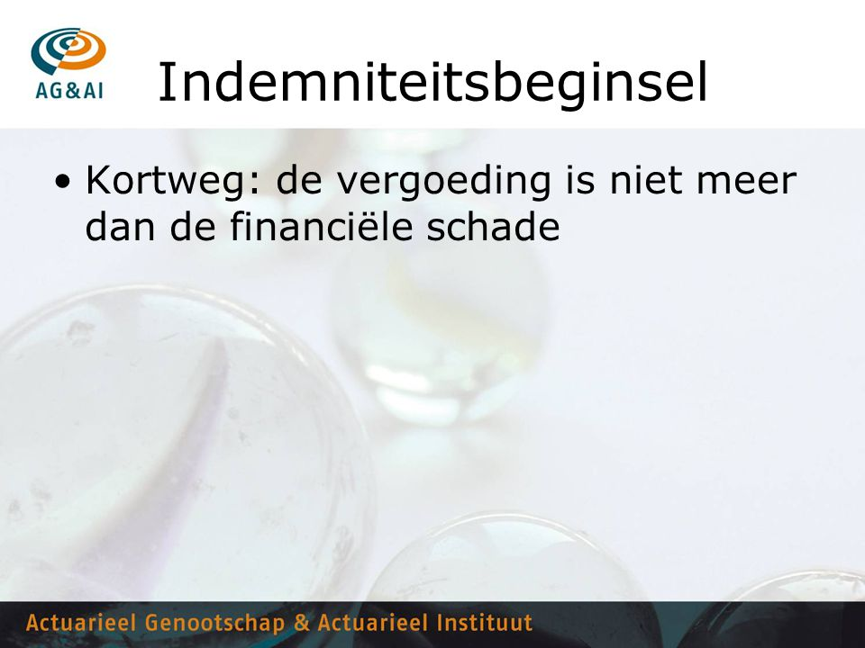 Indemniteitsbeginsel