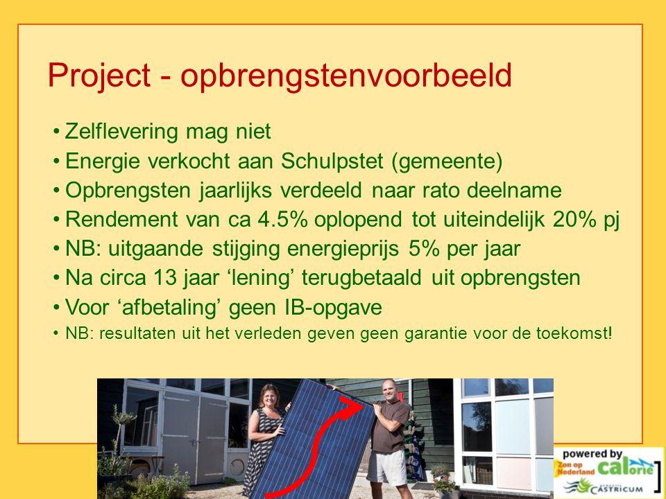 Project - opbrengstenvoorbeeld