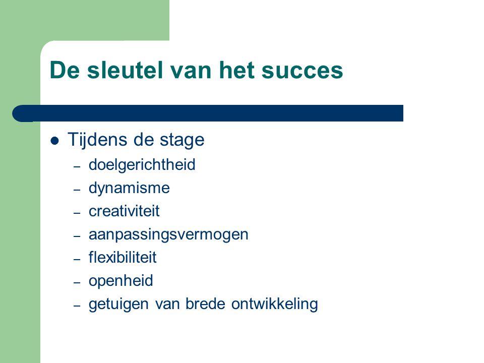 De sleutel van het succes